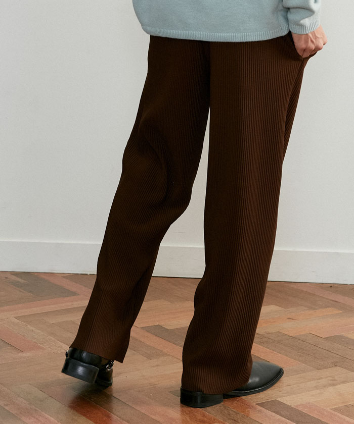 TAILORED PLEATS PANTS[BROWN]
